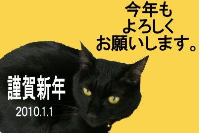 kurobe2010.jpg